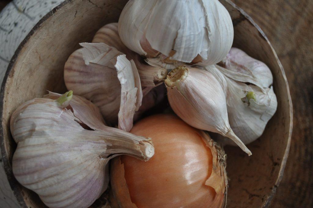 microbiotes : ail, oignons