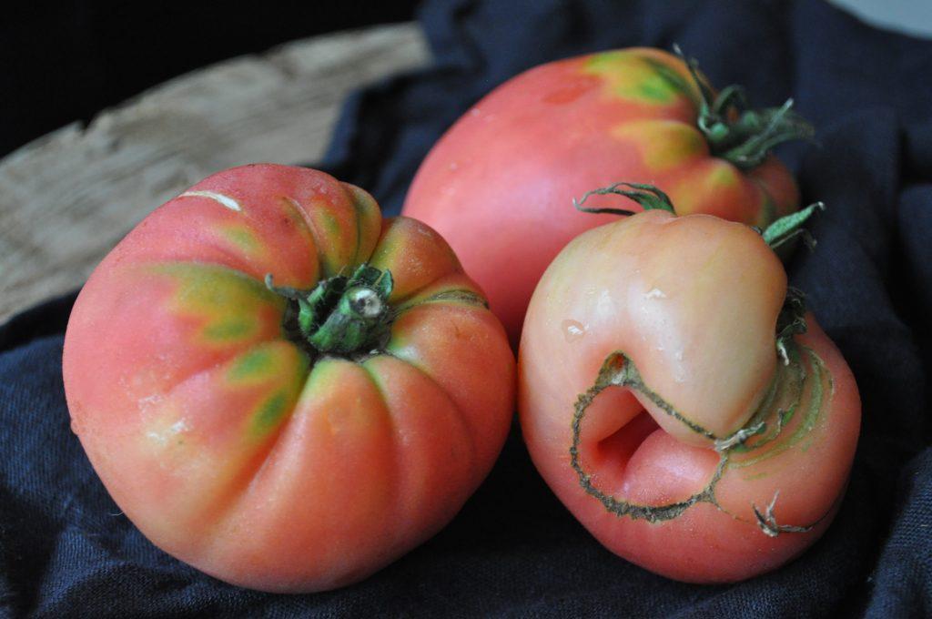 Fruits entiers en toute simplicité